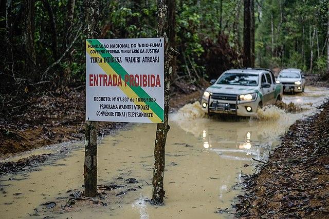 lutte déforestation Brésil